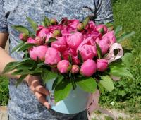 Коробка с розовыми пионами