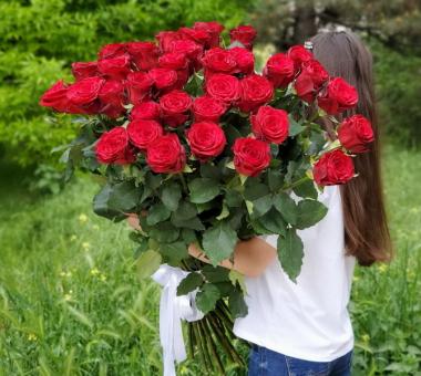 35 высоких бордовых роз