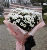 Букет из хризантемы ромашковой
